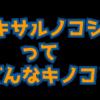 コフキサルノコシカケ生態や特徴を大紹介!とても硬く身近なキノコ!