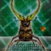 フェイスタメルシワバネクワガタの生態や特徴を大紹介!ムシキングに登場した昆虫!