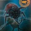 タイゴホンヅノカブトの生態や特徴を大紹介!ムシキングに登場した五本の角を持つカブ